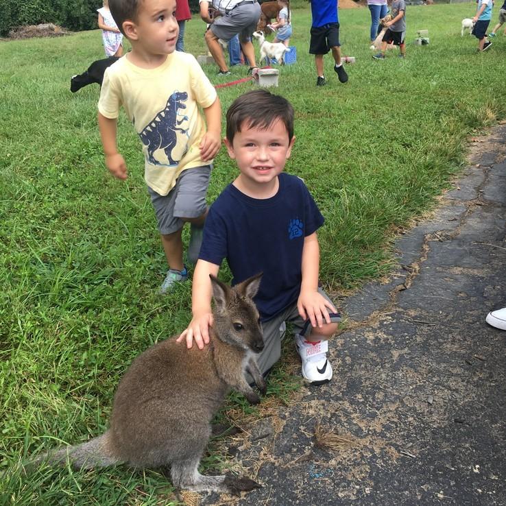 Petting Zoo Finn