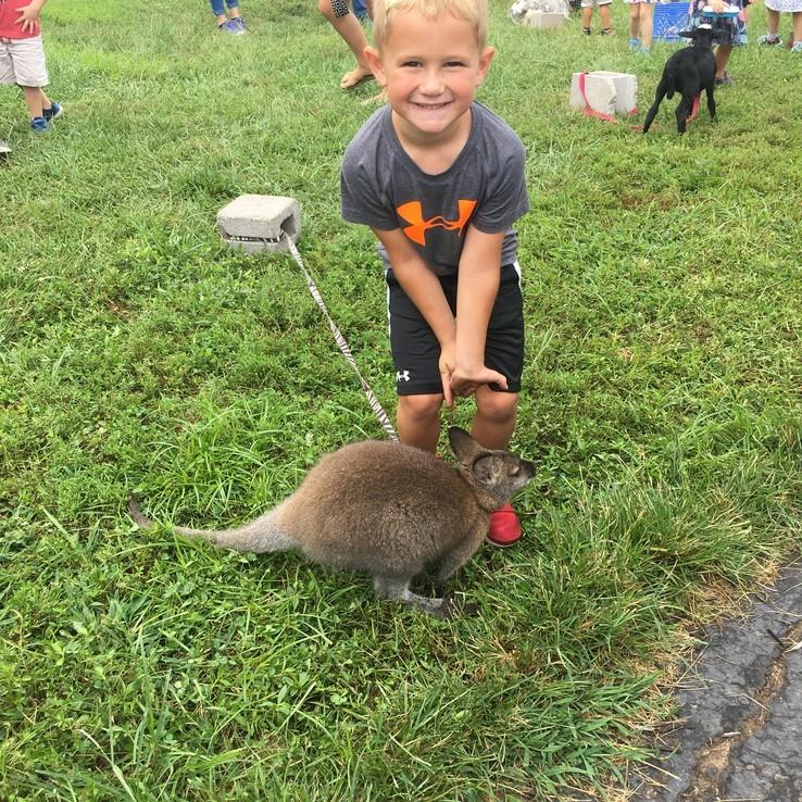 Petting Zoo Hudson
